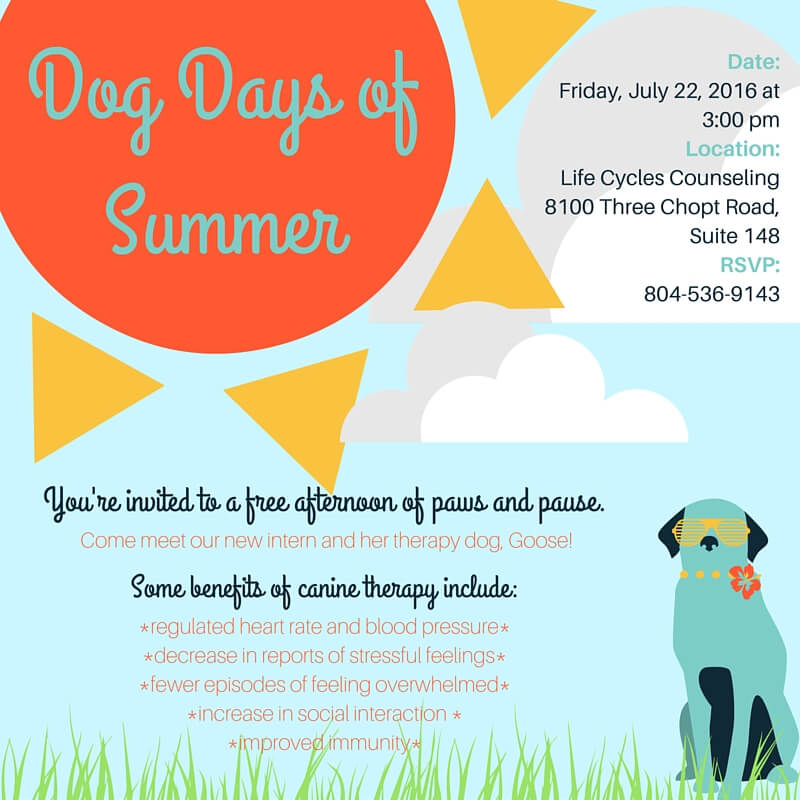 Dog Days of Summer at Life Cycles Counseling