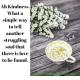 www.adinasilvestri.com_kindness_quoteoftheday