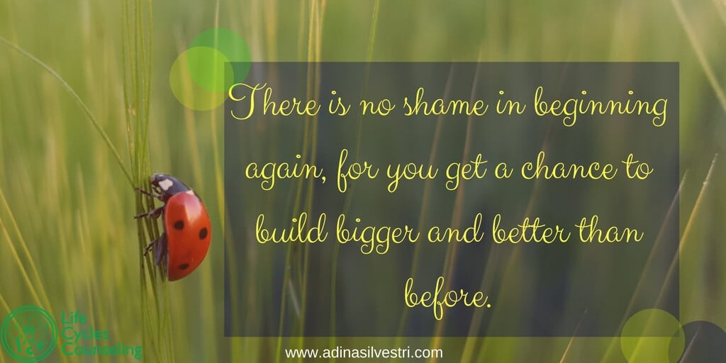 www.adinasilvestri.com quote of the day begin again