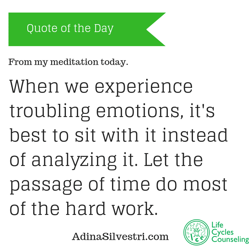 adinasilvestri.com quote of the day metta