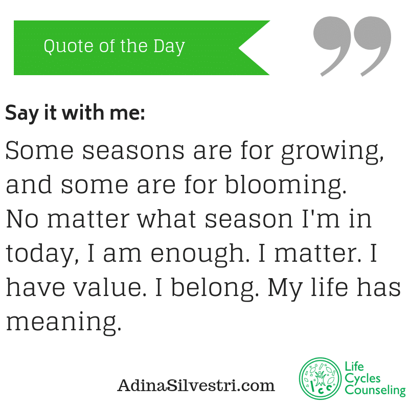 adinasilvestri.com quote of the day say it with me!
