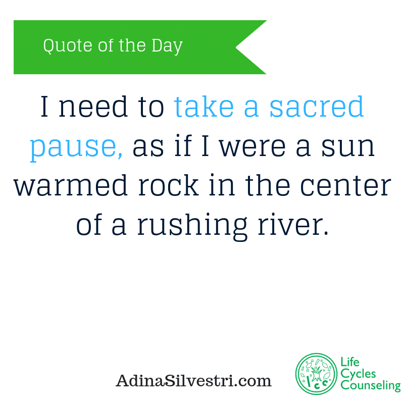 adinasilvestri.com quote of the day take a pause