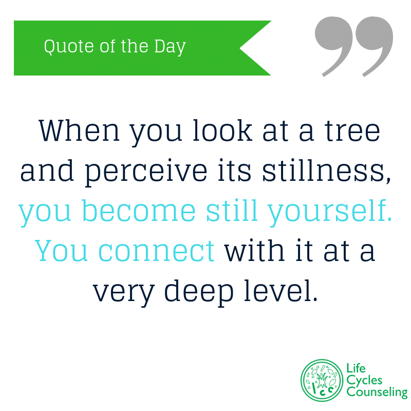 adinasilvestri.com quote of the day inner stillness
