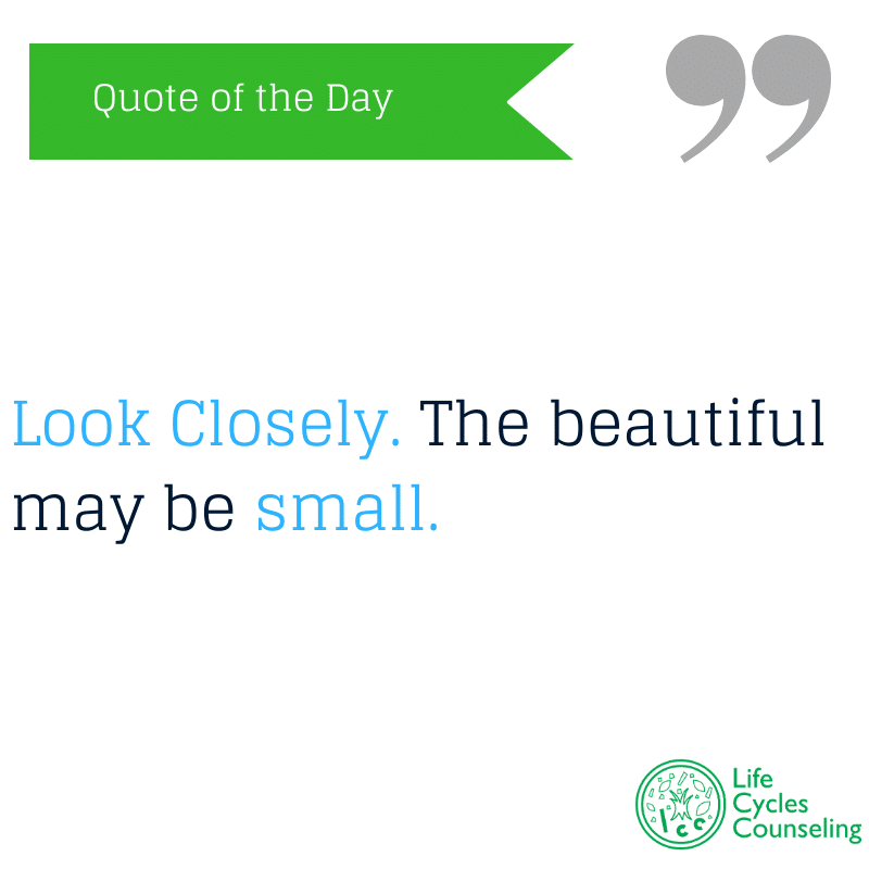 adinasilvestri.com quote of the day look closely