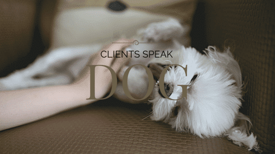 Clients Speak Dog - Life Cycles Counseling with Adina Silvestri